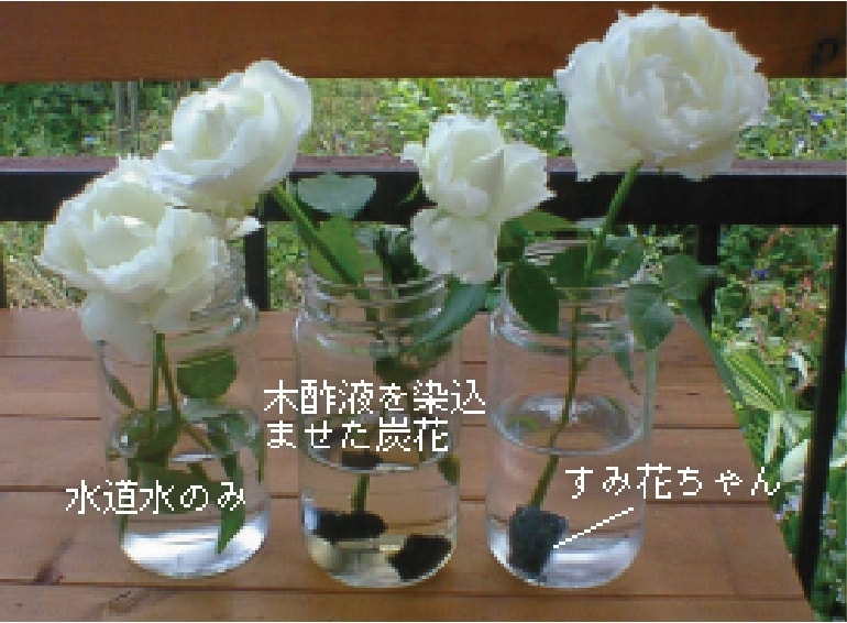 pr-sumikachan-02-2