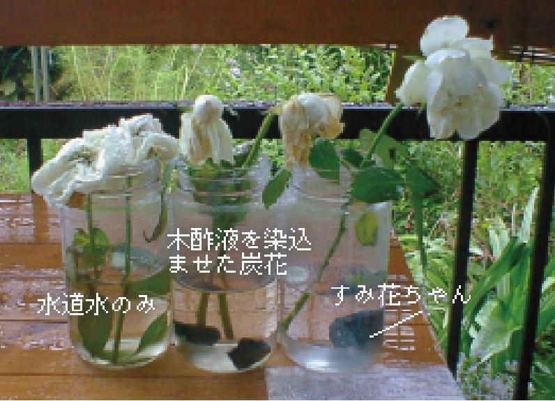 pr-sumikachan-02-3